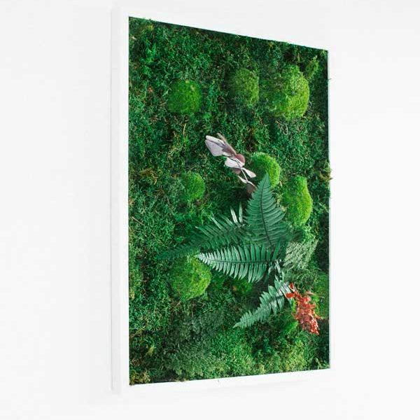 GreenCityLive - Moosbild Akzent Pflanzenbild