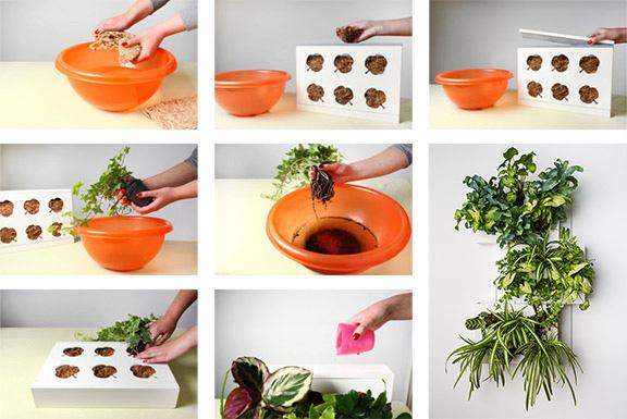 GreenCityLive - Pflanzenbild Rahmen DIY Anleitung
