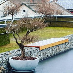 Moosmatten auf einer Terrasse
